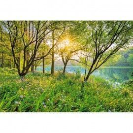 Mural scenics edition 1 ref. m-8-524_spring_lake