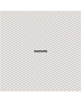 Papel Pintado Graphite - Casa Mia Ref. RM90100.