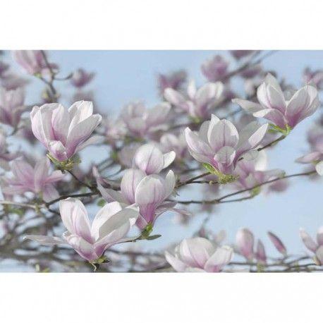 Mural into illusions ref. m-8-738_magnolia